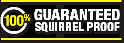 100% Guaranteed Squirrel Proof