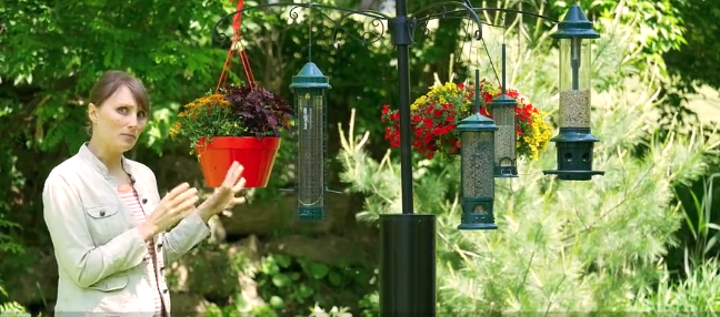 BBN 2-54 Keeping Unwelcome Birds and Critters Away from your Feeders