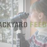 BBN 4-04 - Backyard Feeding - The Great Backyard Bird Count